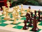 """Над 120 деца се включват в шахматния турнир """"Тракийско конче"""" в Стара Загора"""